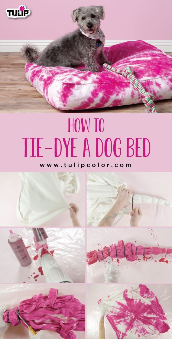 Tulip How To Tie Dye a Dog Bed